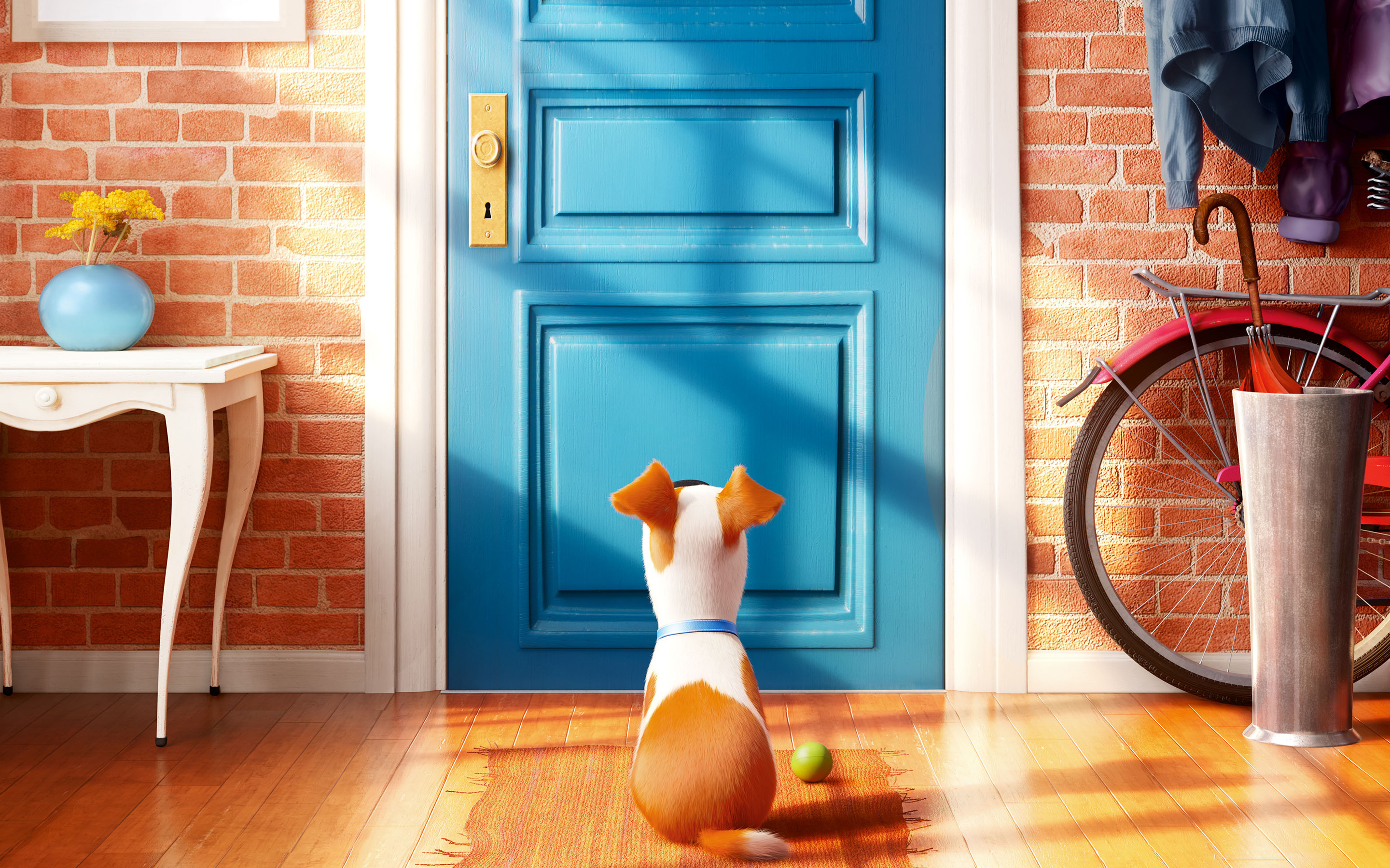 The Secret Life Of Pets 2016 Hindi Download: 2016 The Secrete Life Of Pets, HD Movies, 4k Wallpapers