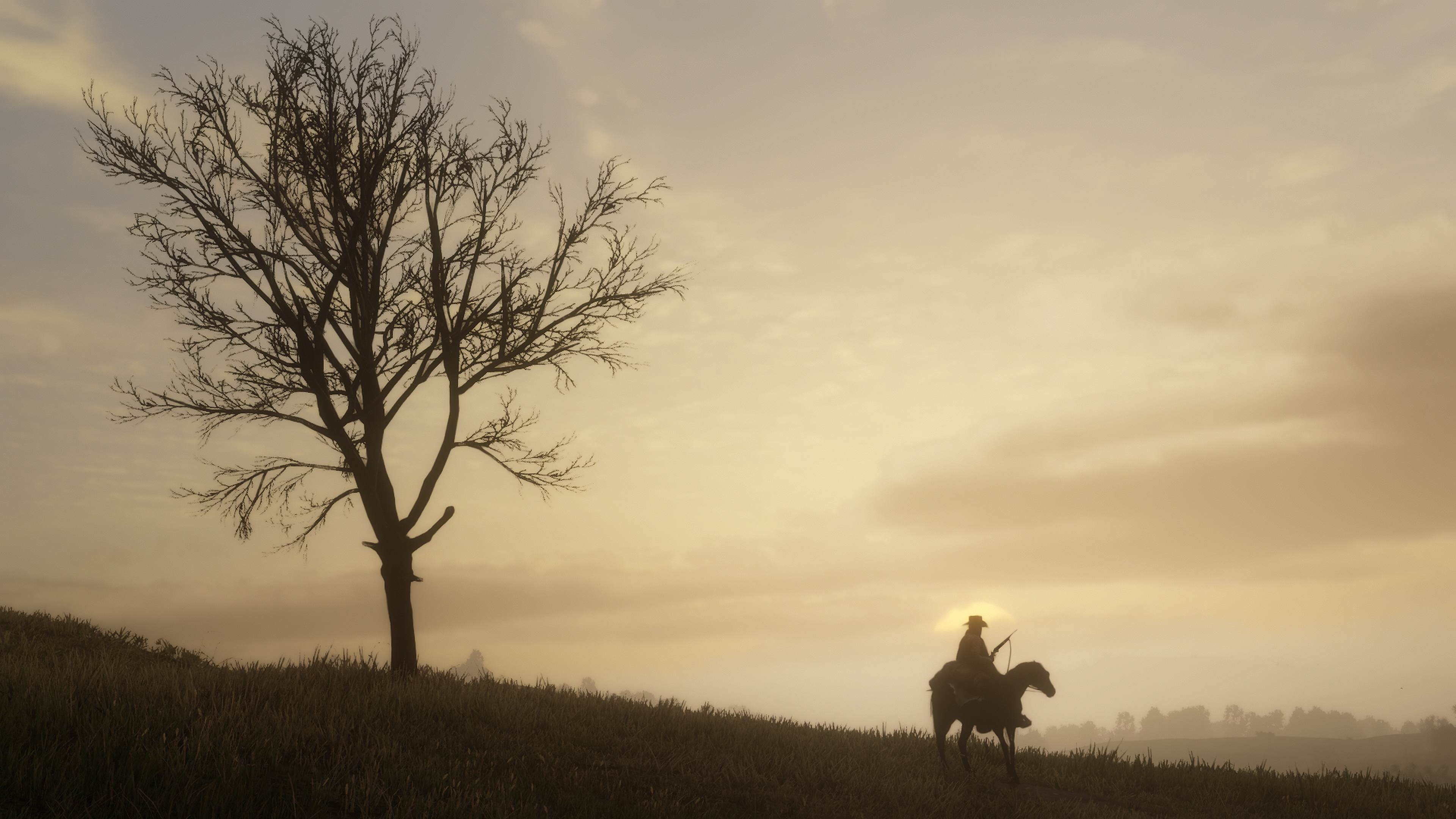 2018 Red Dead Redemption 2 PS4 4k, HD Games, 4k Wallpapers