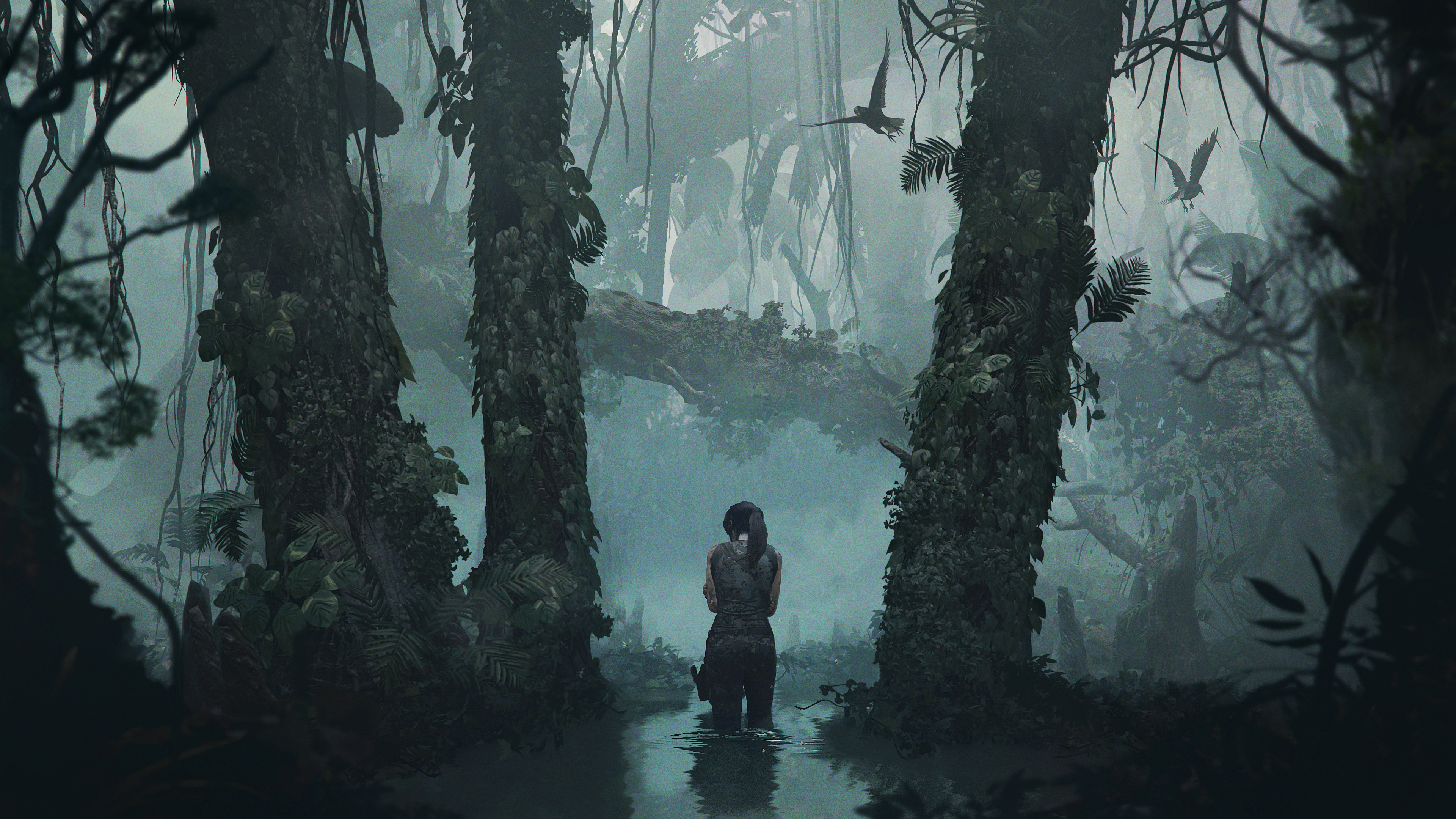 4k Shadow Of The Tomb Raider, HD Games, 4k Wallpapers ...