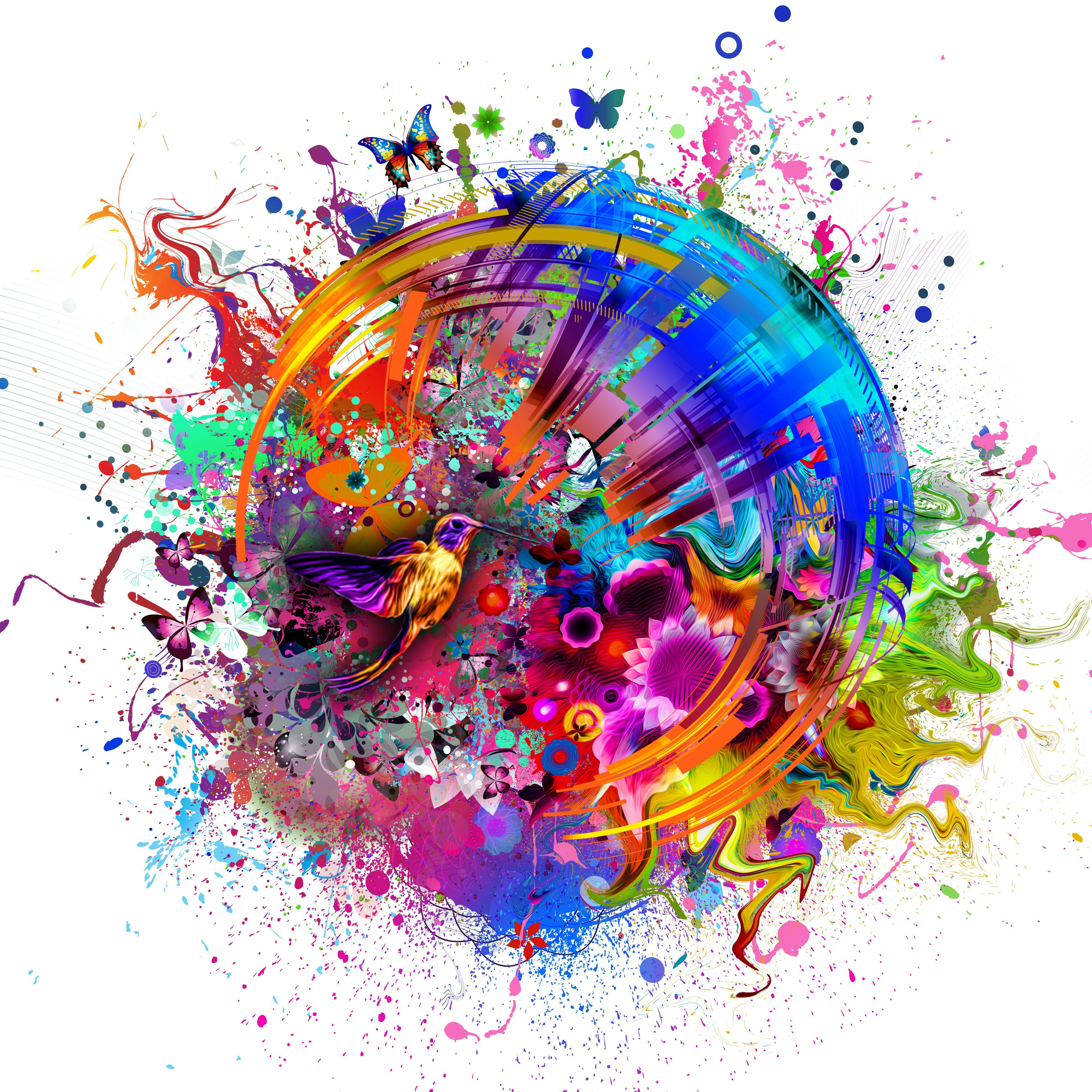 4k Resolution Wallpaper: 2560x1440 Abstract Colors Flashy Bird 4k 1440P Resolution