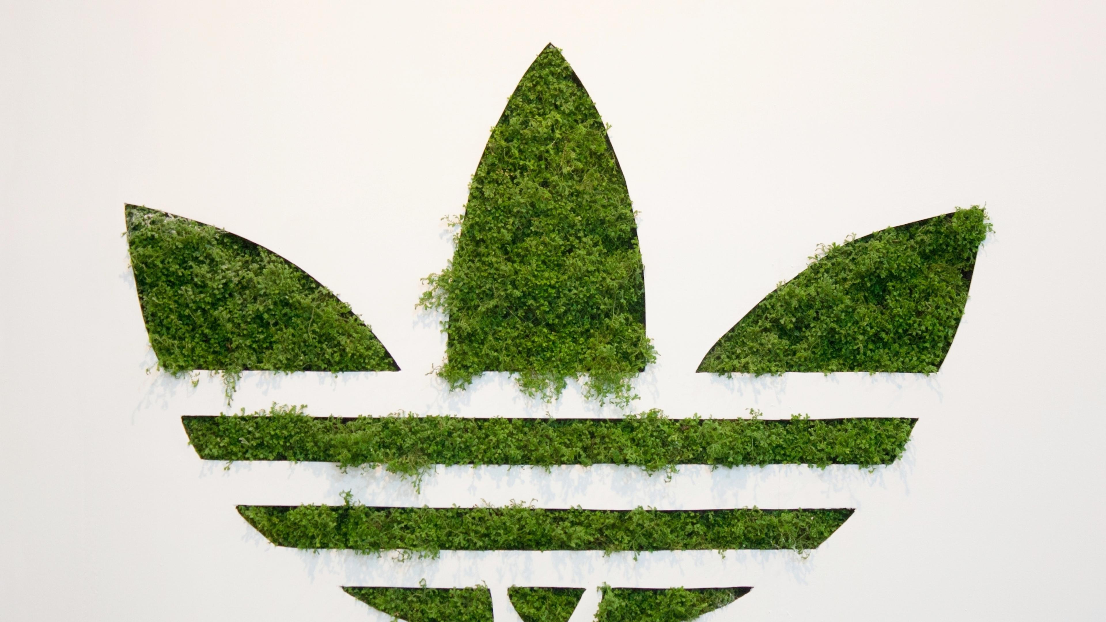 Adidas Grass Logo (Laptop Full HD 1080P)