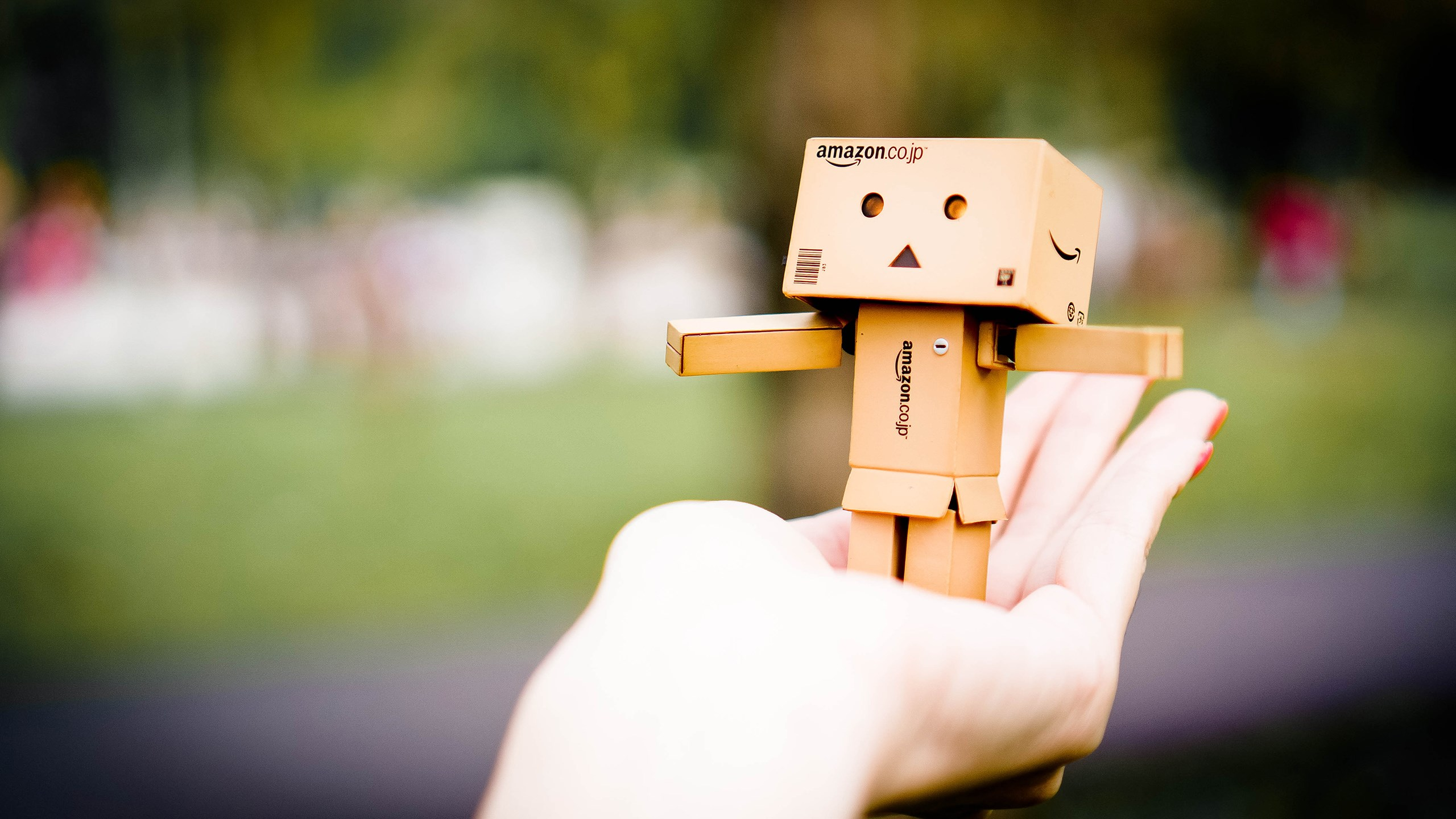 Amazon Danbo HD Cute 4k Wallpapers Images Backgrounds Photos