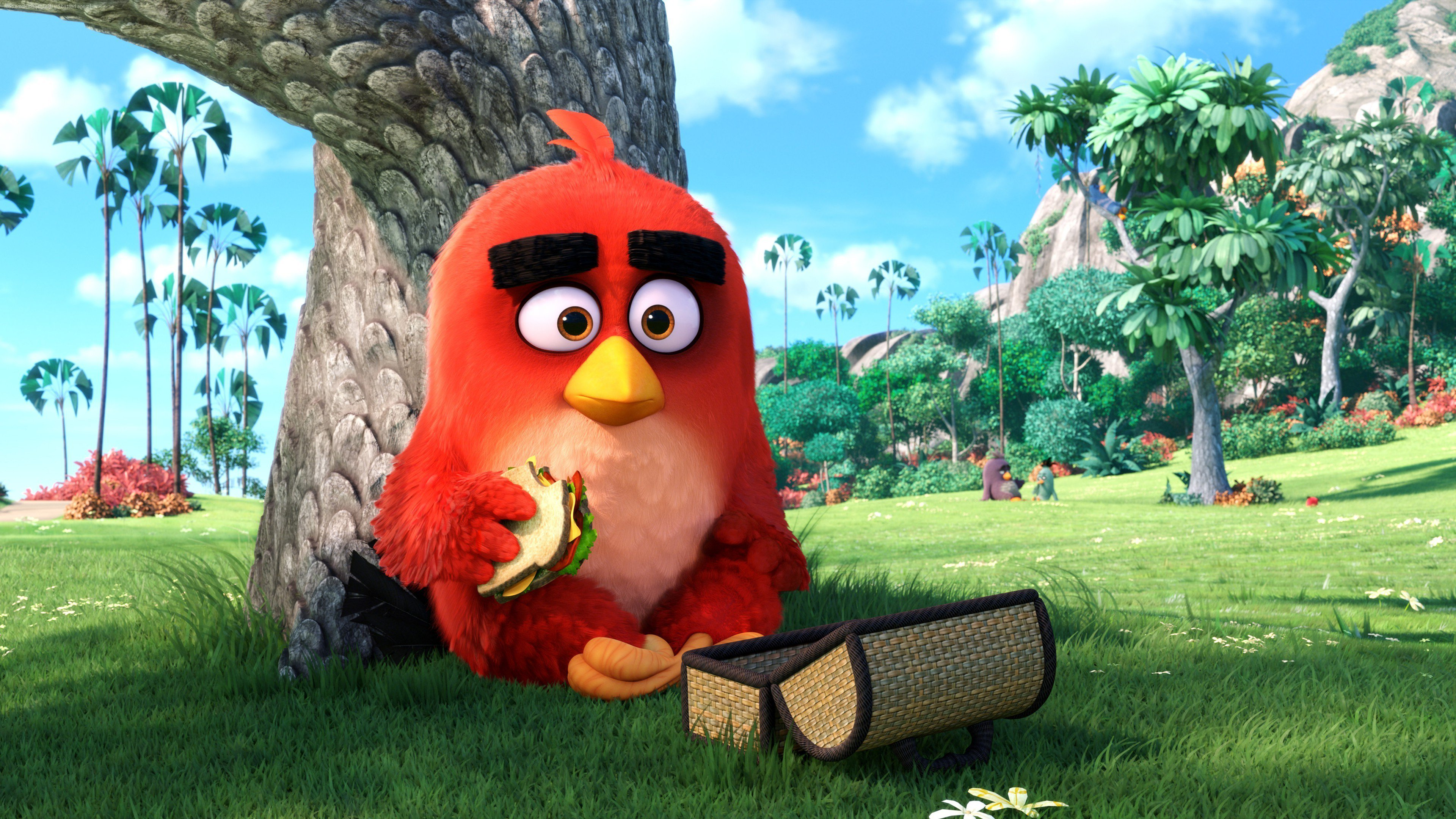 Angry Birds Movie Characters: 2048x1152 Angry Birds Main Character 2048x1152 Resolution