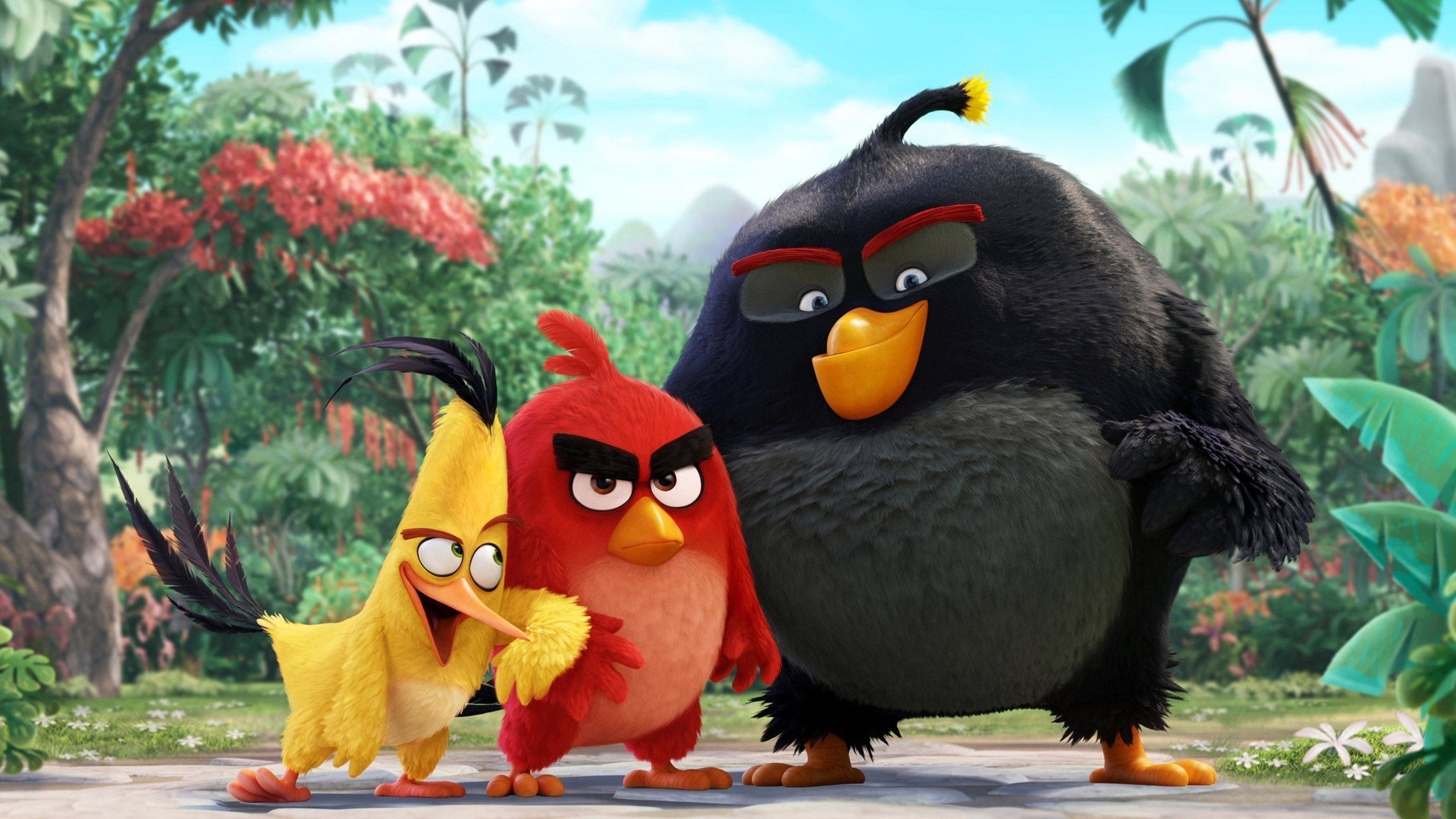 Desktop the angry birds movie ultra hd bluray review high on image.