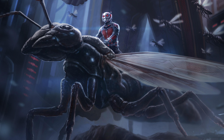 Ant Man Retina Movie Wallpaper: Ant Man Artwork, HD Movies, 4k Wallpapers, Images