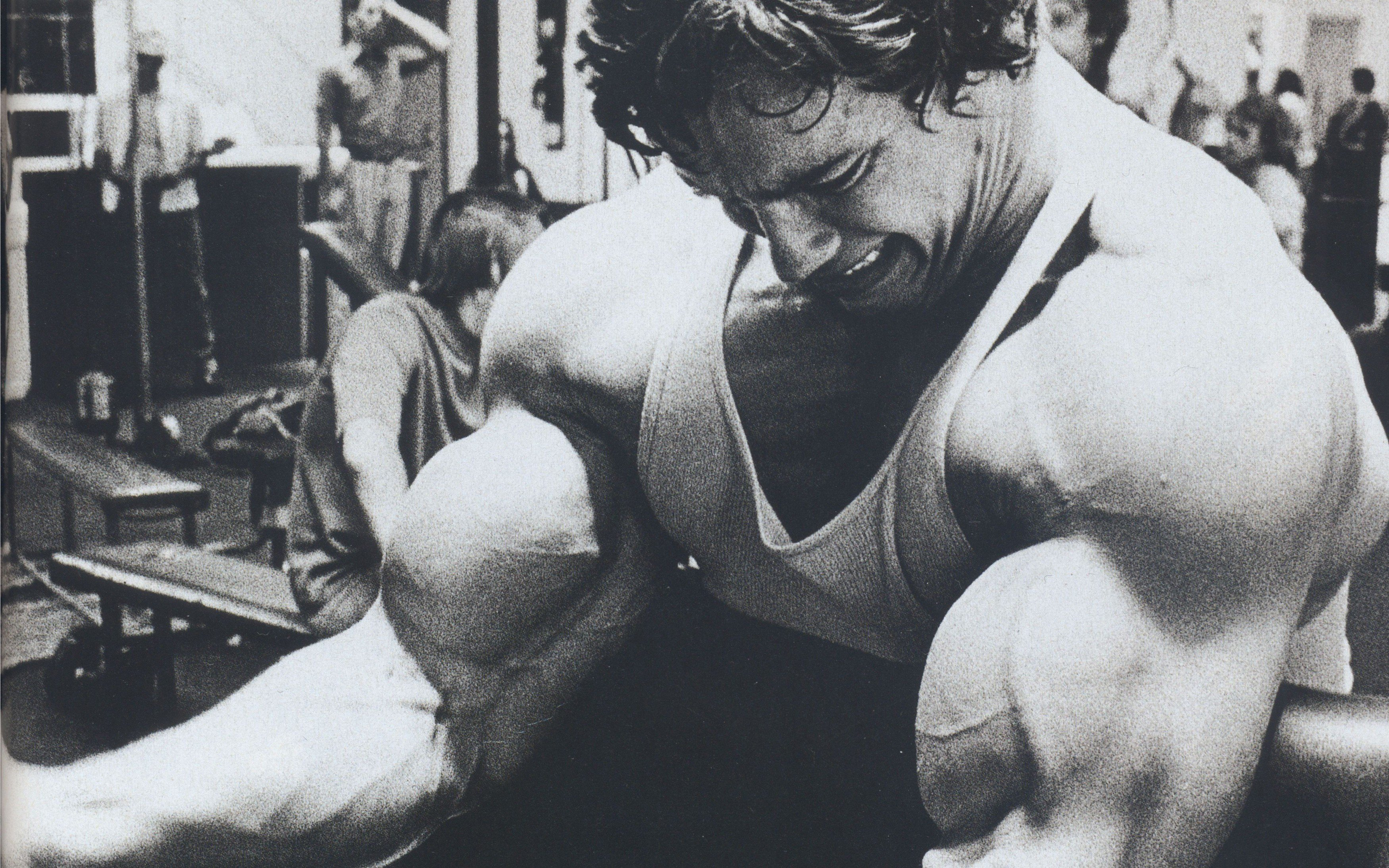 arnold schwarzenegger arms, hd celebrities, 4k wallpapers, images