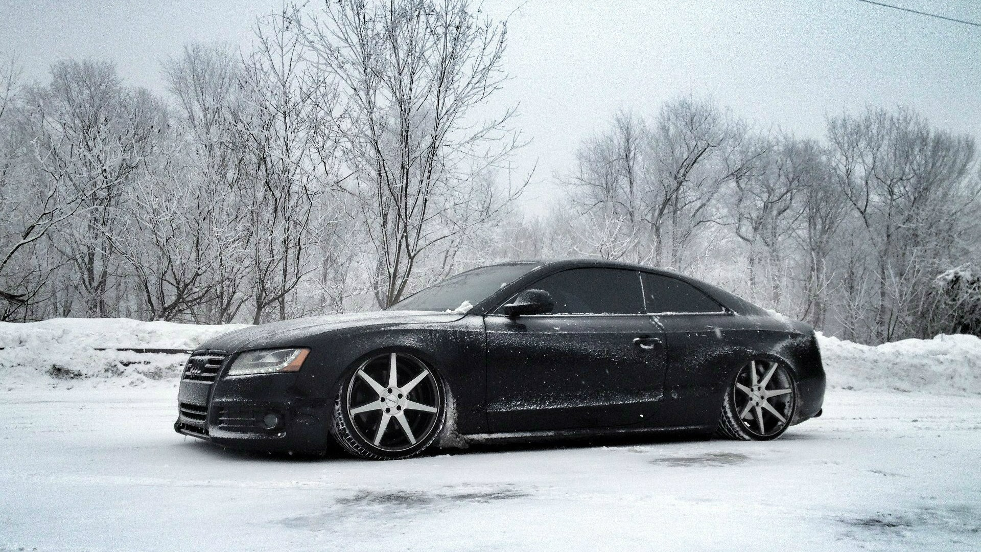 Audi In Snow Hd Cars 4k Wallpapers Images Backgrounds
