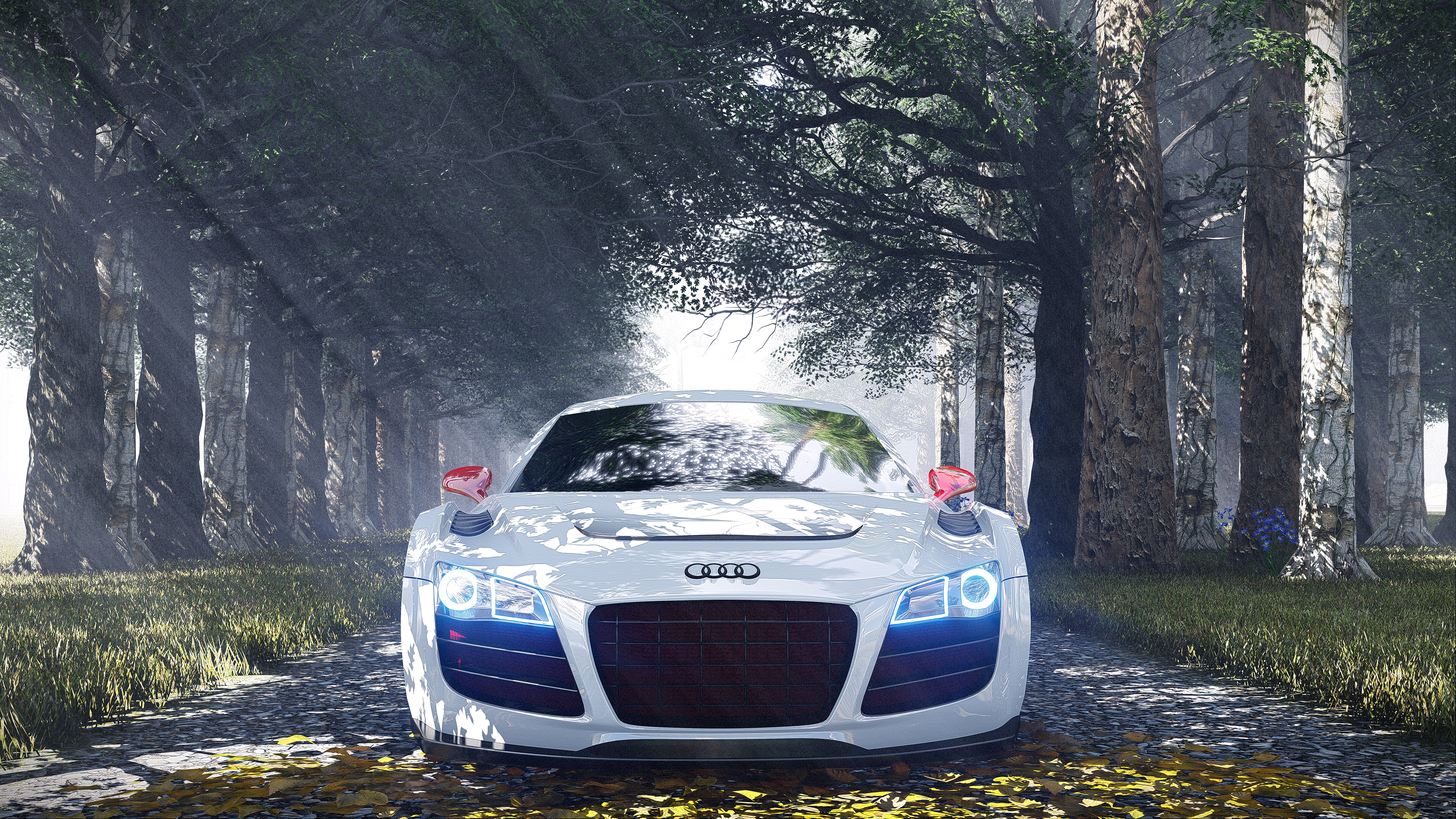 Audi R8 Special Edition Hd Cars 4k Wallpapers Images