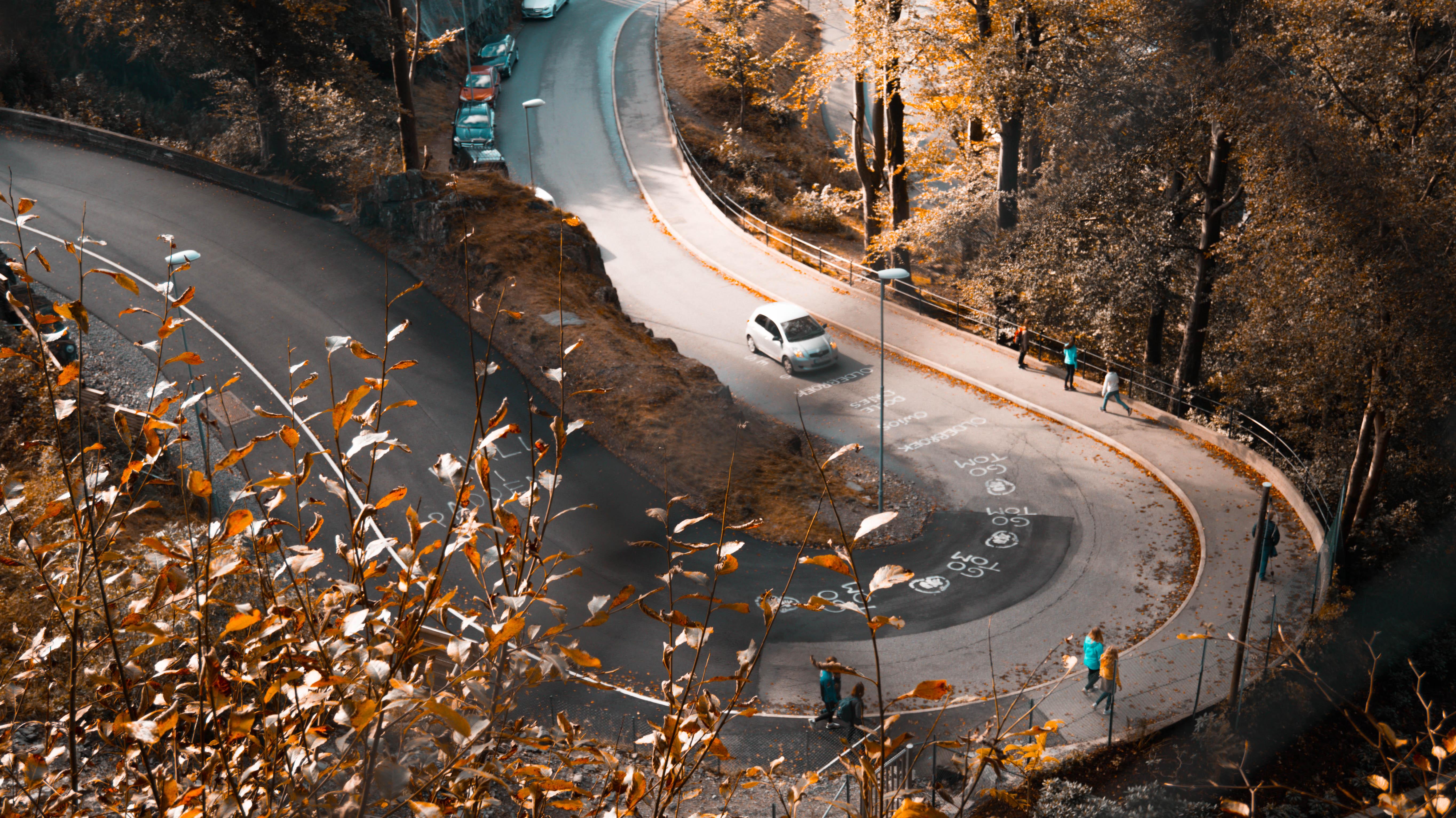 Autumn Road Orange Leaves Fallen Cars Peoples Walking 5k