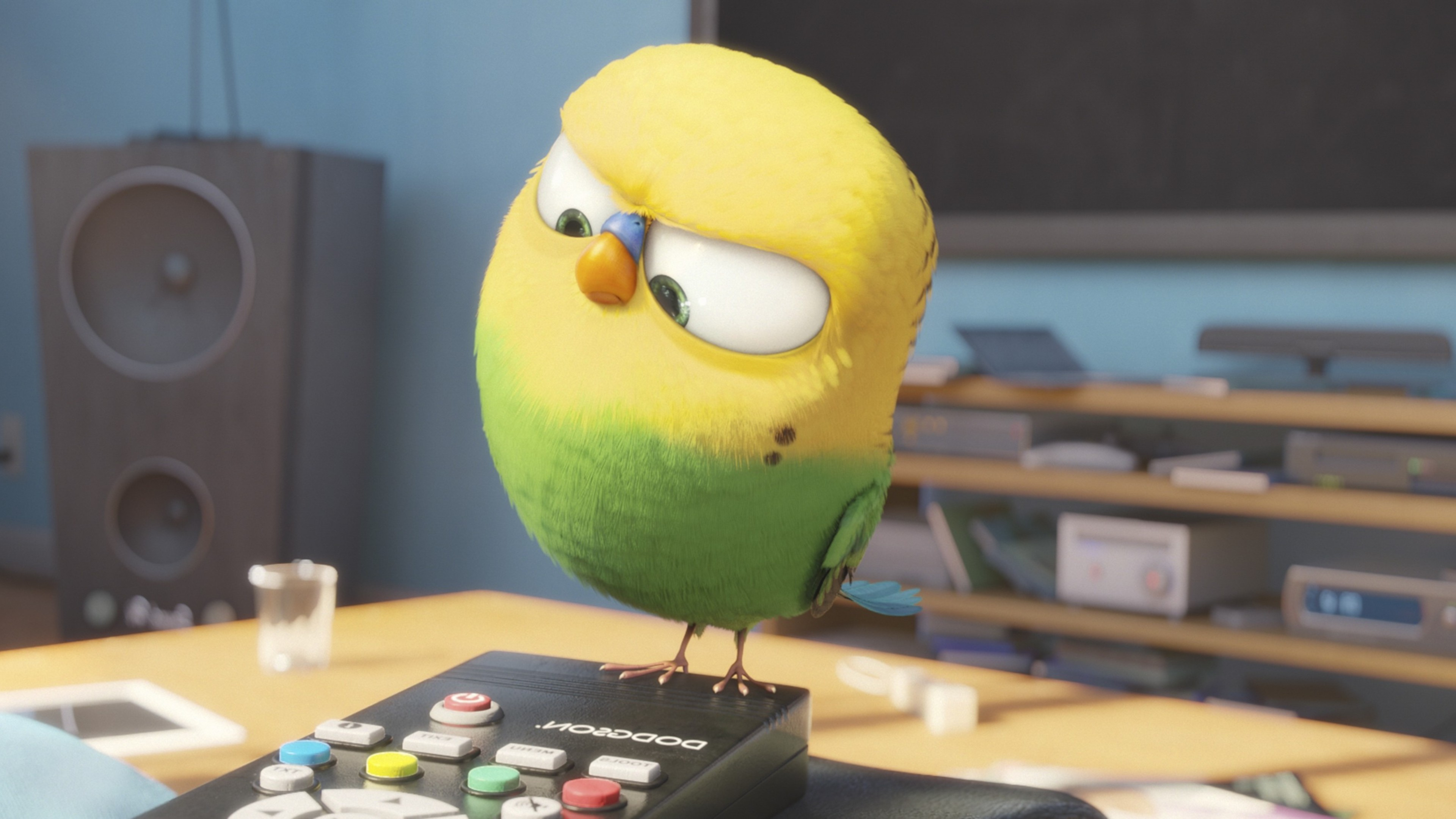 Bird Secrete Life Of Pets, HD Movies, 4k Wallpapers