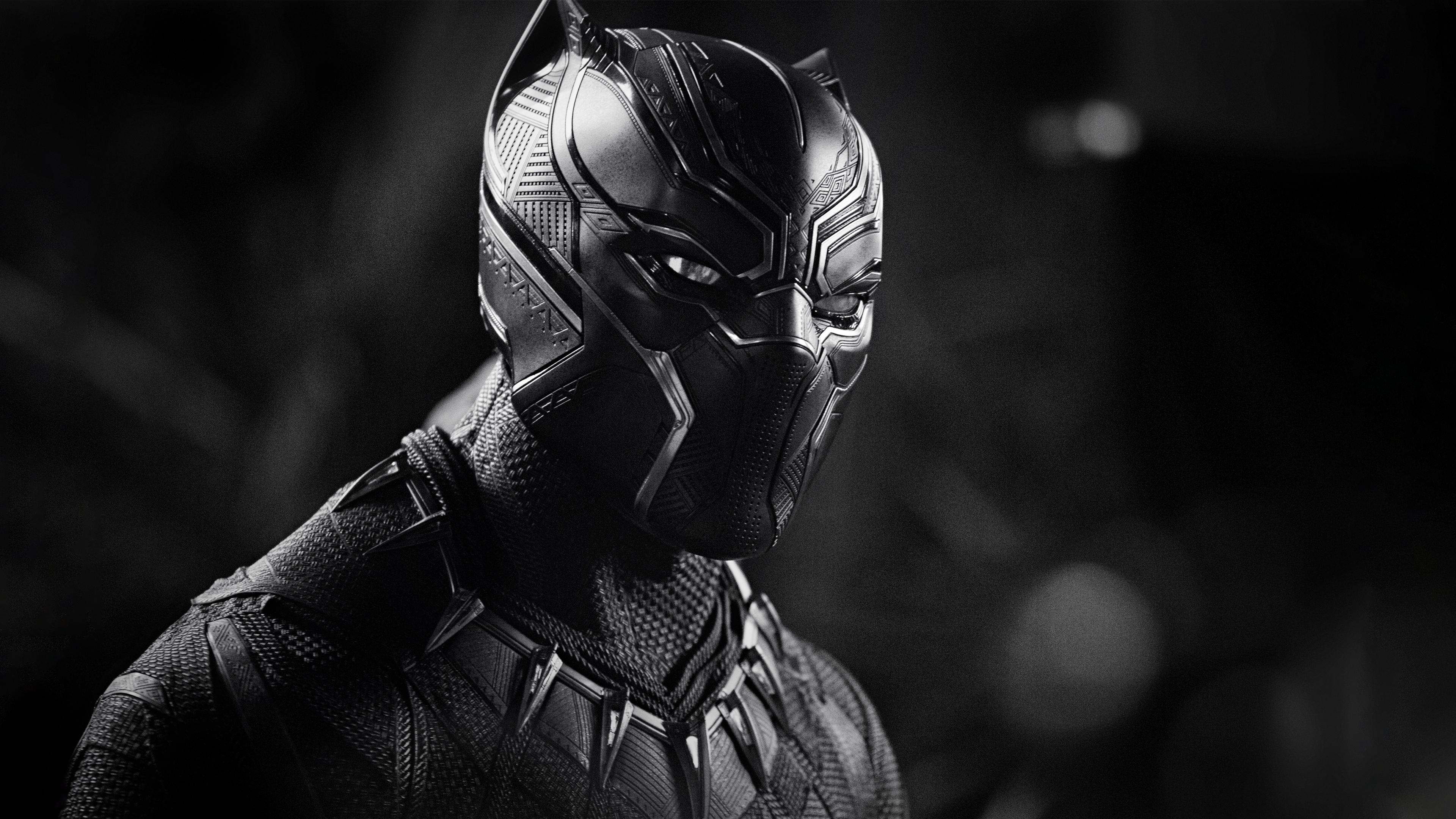 black panther monochrome 4k hd movies 4k wallpapers images