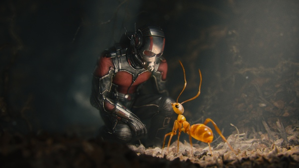 ant-man-movie.jpg