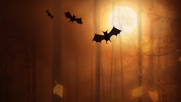 bats-night-moon-trees-fallen-leaves-in.jpg