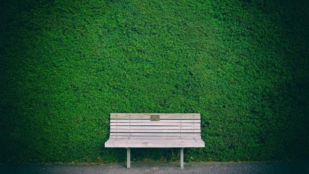 Beautiful Bench In Garden Hd Nature 4k Wallpapers