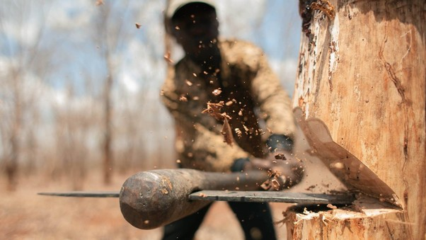 chopping-trees-with-axe-pic.jpg