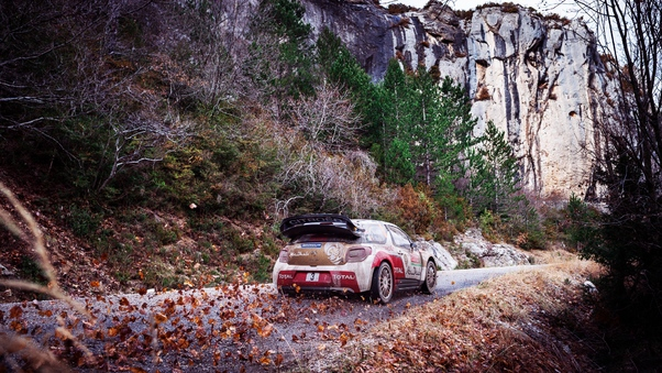 citroen-ds3-rally-fall.jpg
