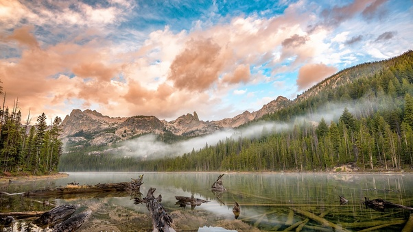 cloud-fog-forest-lake-mountain-fe.jpg
