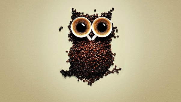 Coffee Beans Owl Art