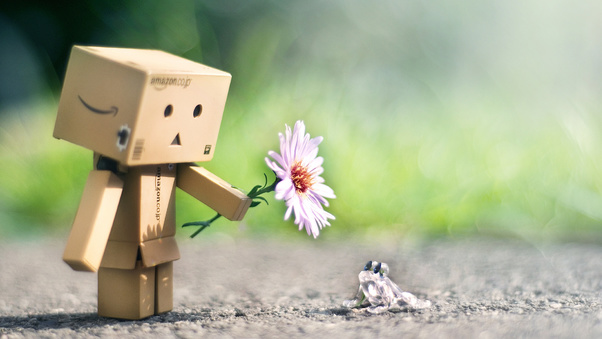 Danbo With Flower