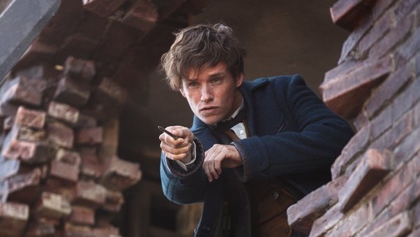 Eddie Redmayne In Fantastic Beasts 2016
