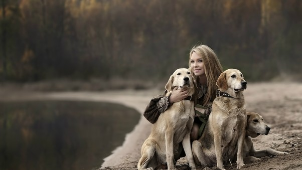 girl-with-labradors-hd.jpg