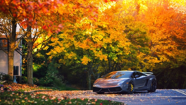 Lamborghini Autumn Gallardo