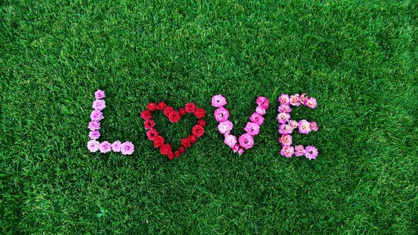 love-flower-art.jpg