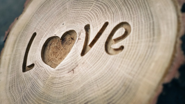 love-written-on-wood-wide.jpg