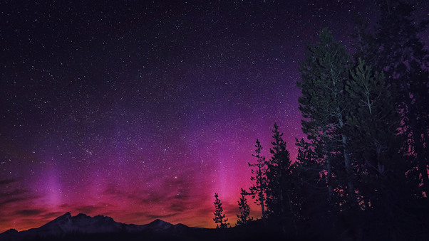 northern-lights-4k-oa.jpg