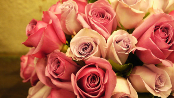 pink-roses-bouquet-pic.jpg
