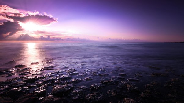 purple-seascape.jpg