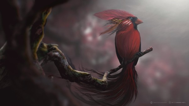 red-bird-digital-art-image.jpg