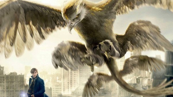 thunderbird-fantastic-beasts-and-where-to-find-them-lu.jpg