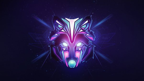 wolf-colorful-minimalism.jpg