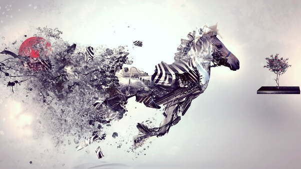 zebra-abstract-art.jpg