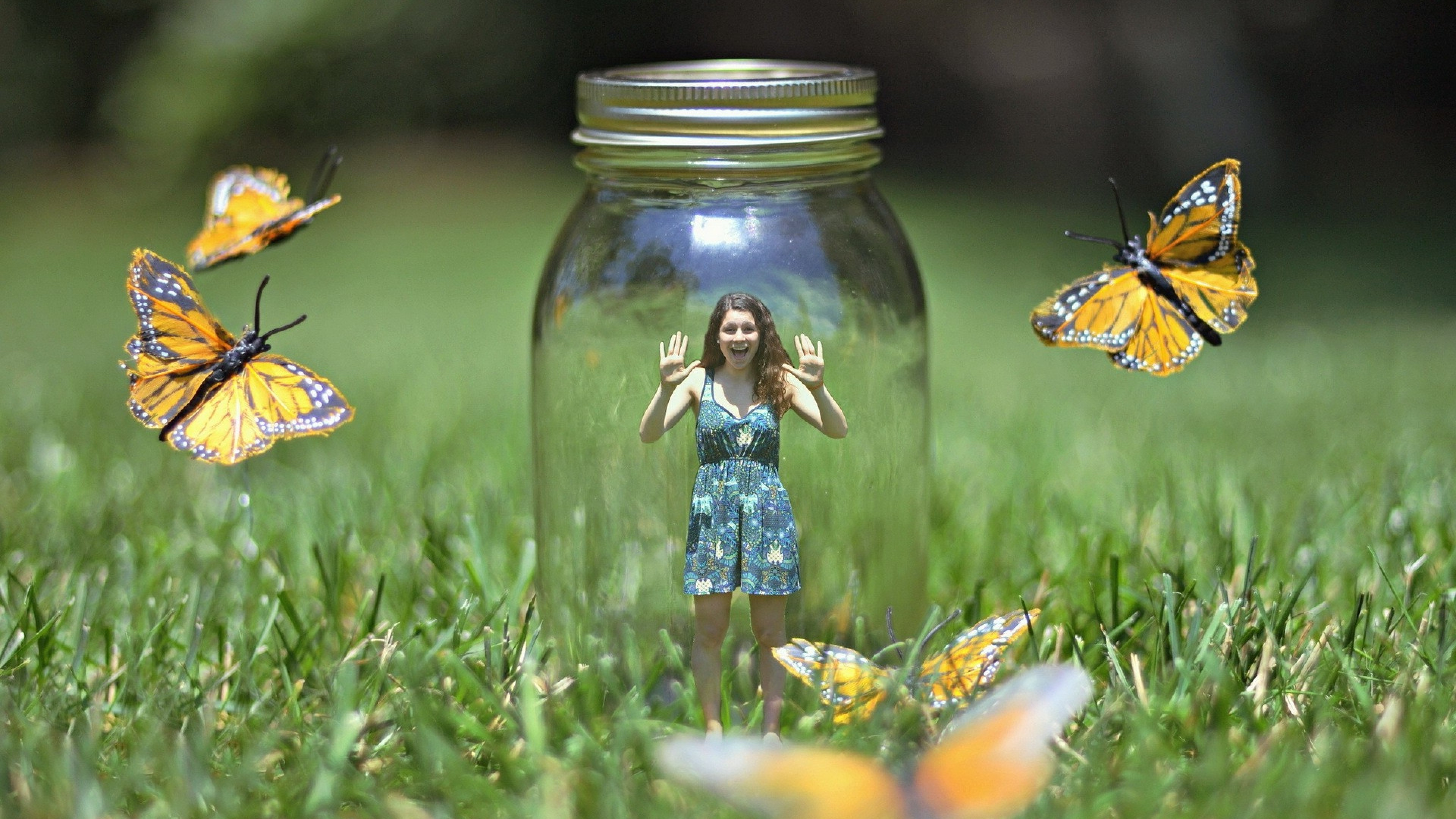 Butterflies Bank Art, HD Creative, 4k Wallpapers, Images