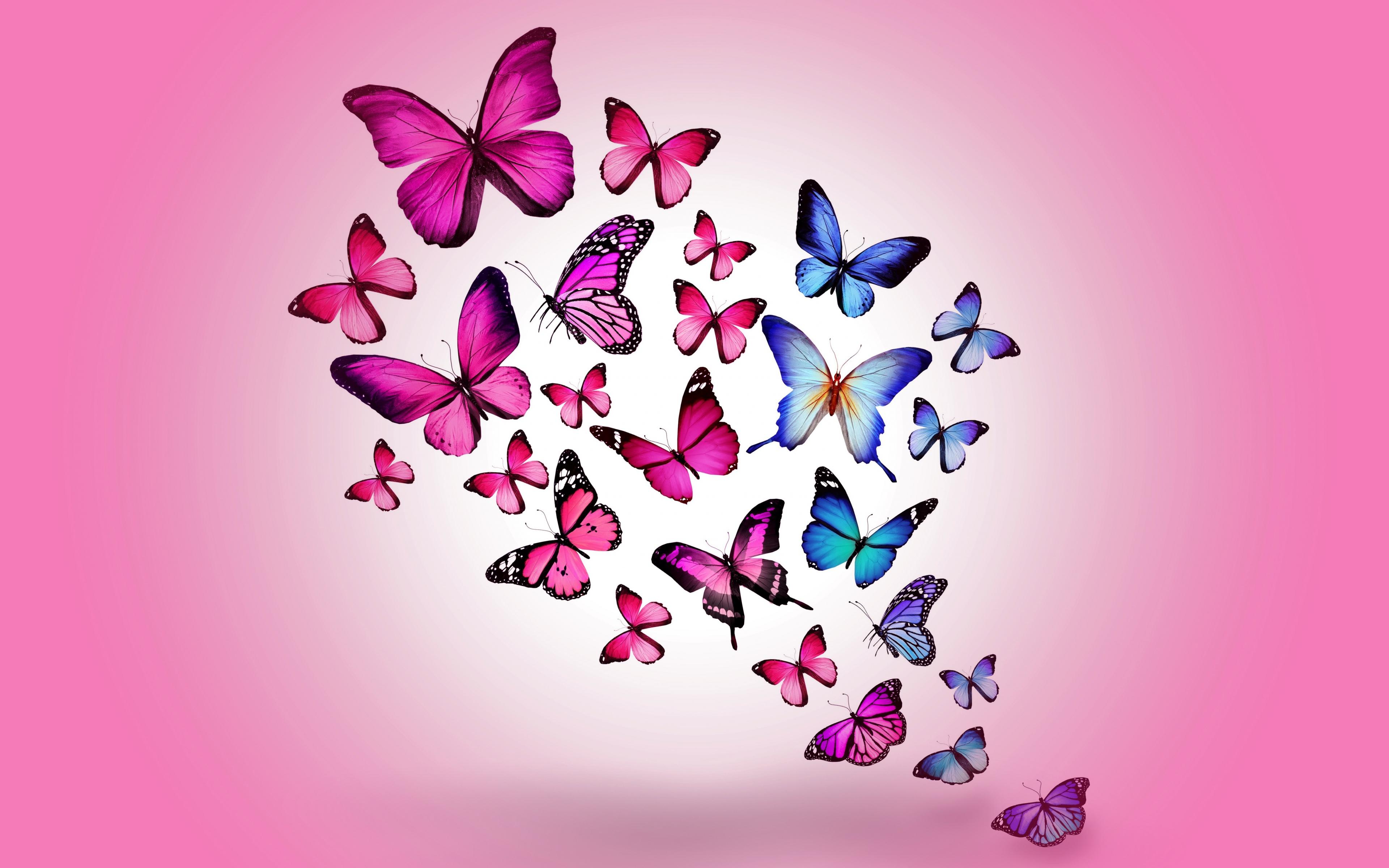Butterfly Art 2, HD Artist, 4k Wallpapers, Images