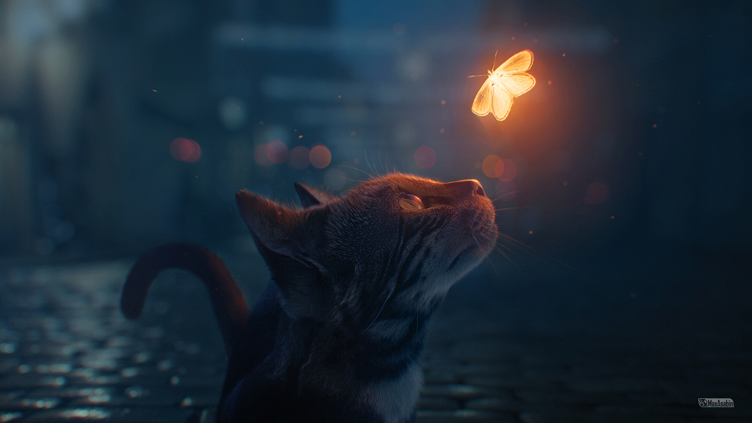 Cat Looking At Butterfly Digital Art, HD Artist, 4k