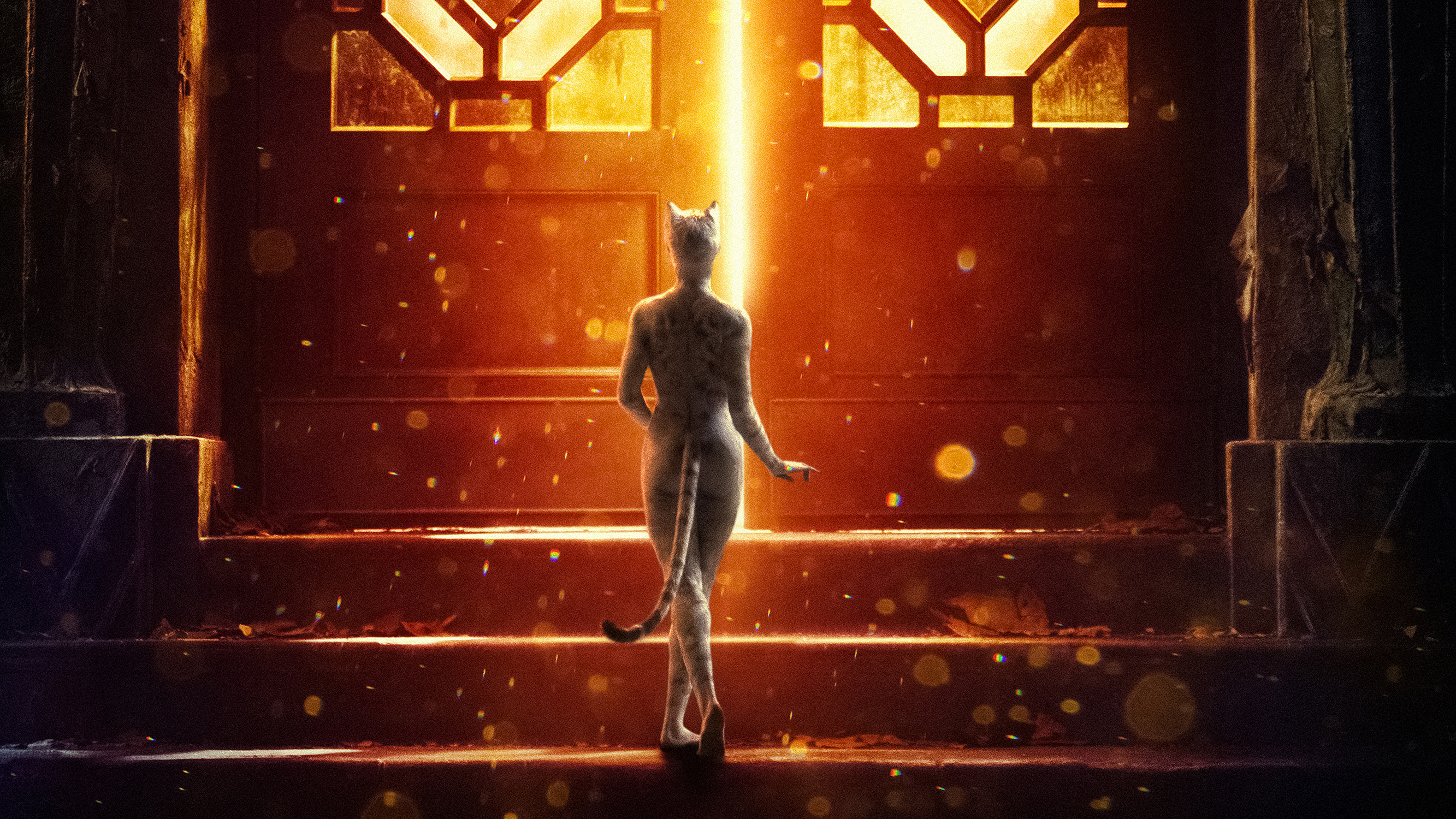 Cats Movie 2019 4k, HD Movies, 4k Wallpapers, Images