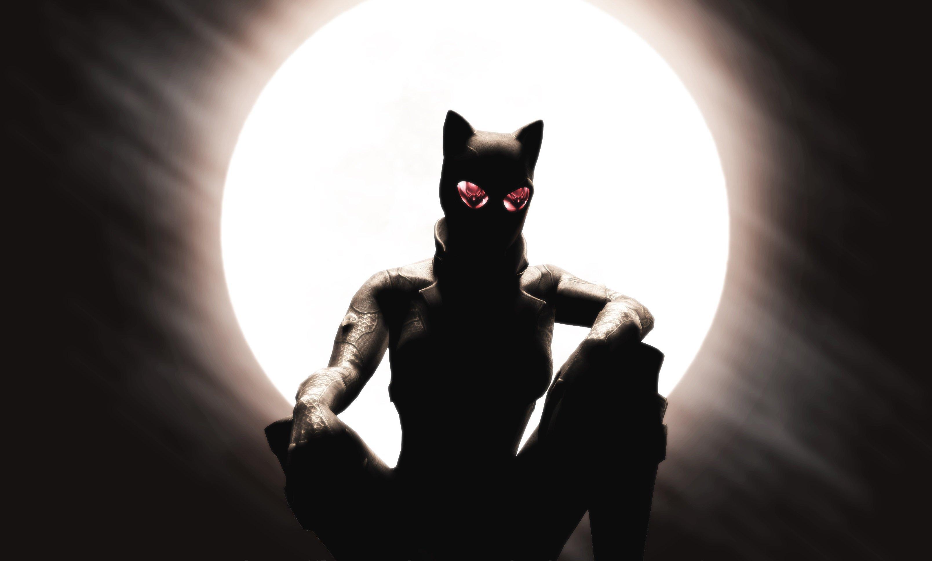 Catwoman Laptop Full HD 1080P
