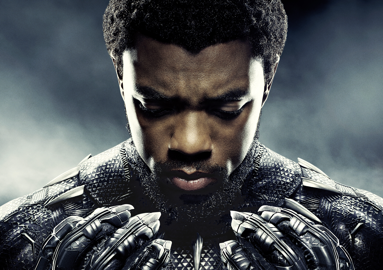 Chadwick Boseman As Black Panther 5k, HD Movies, 4k ...