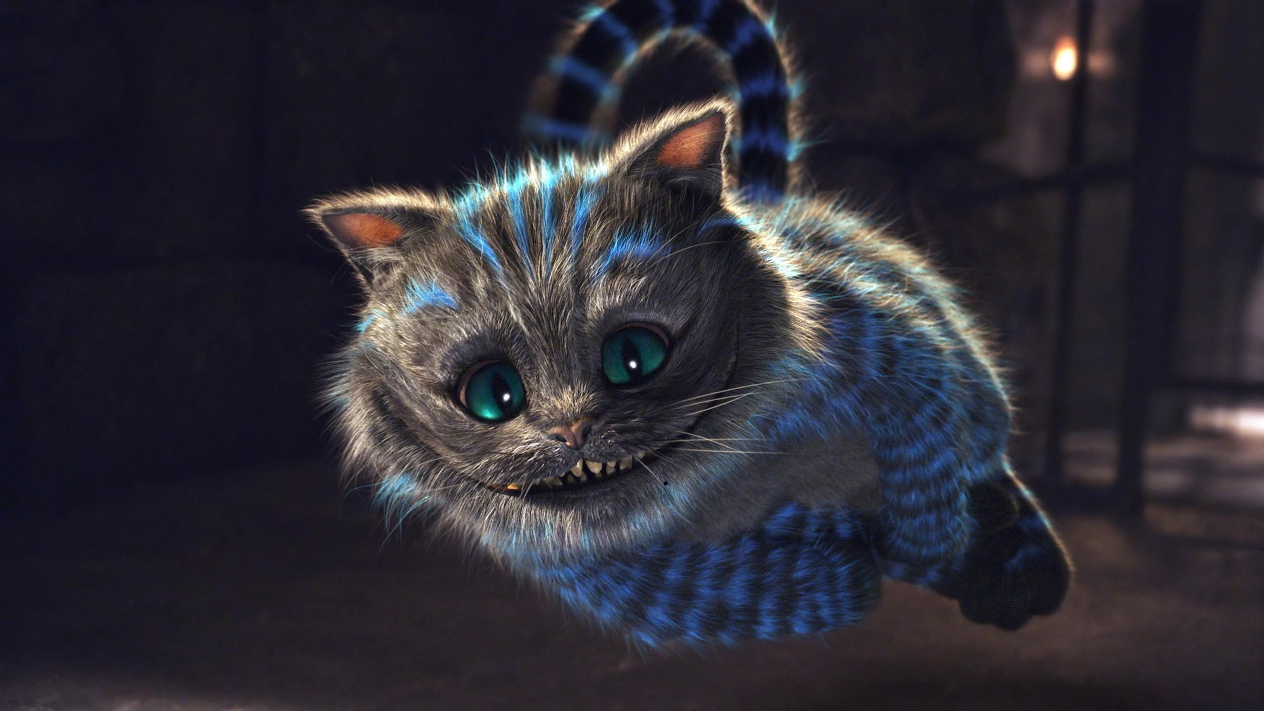 Top Wallpaper Macbook Cat - cheshire-cat  HD_593593.jpg