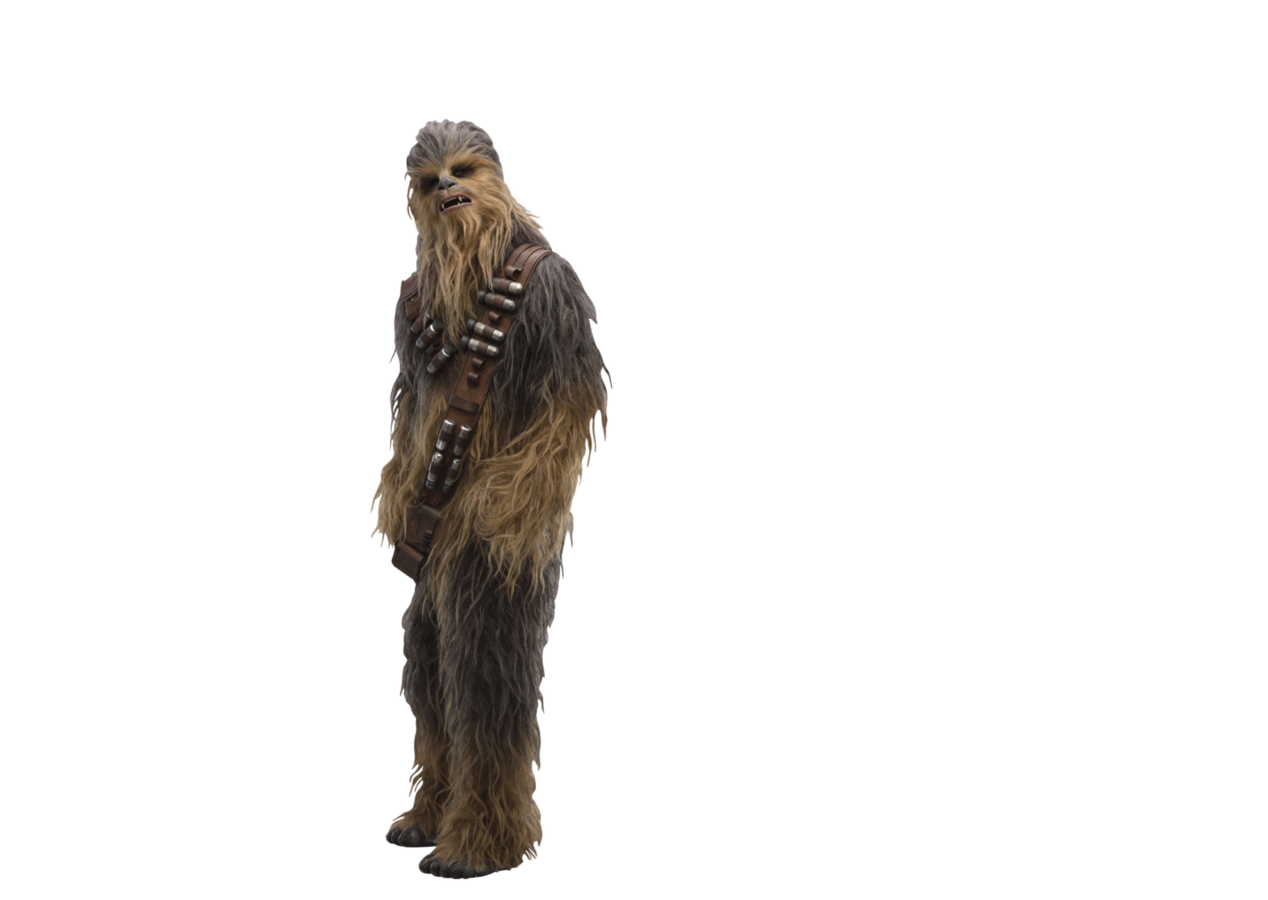 Chewbacca In Solo A Star Wars Story Movie 2018, Hd Movies -4317