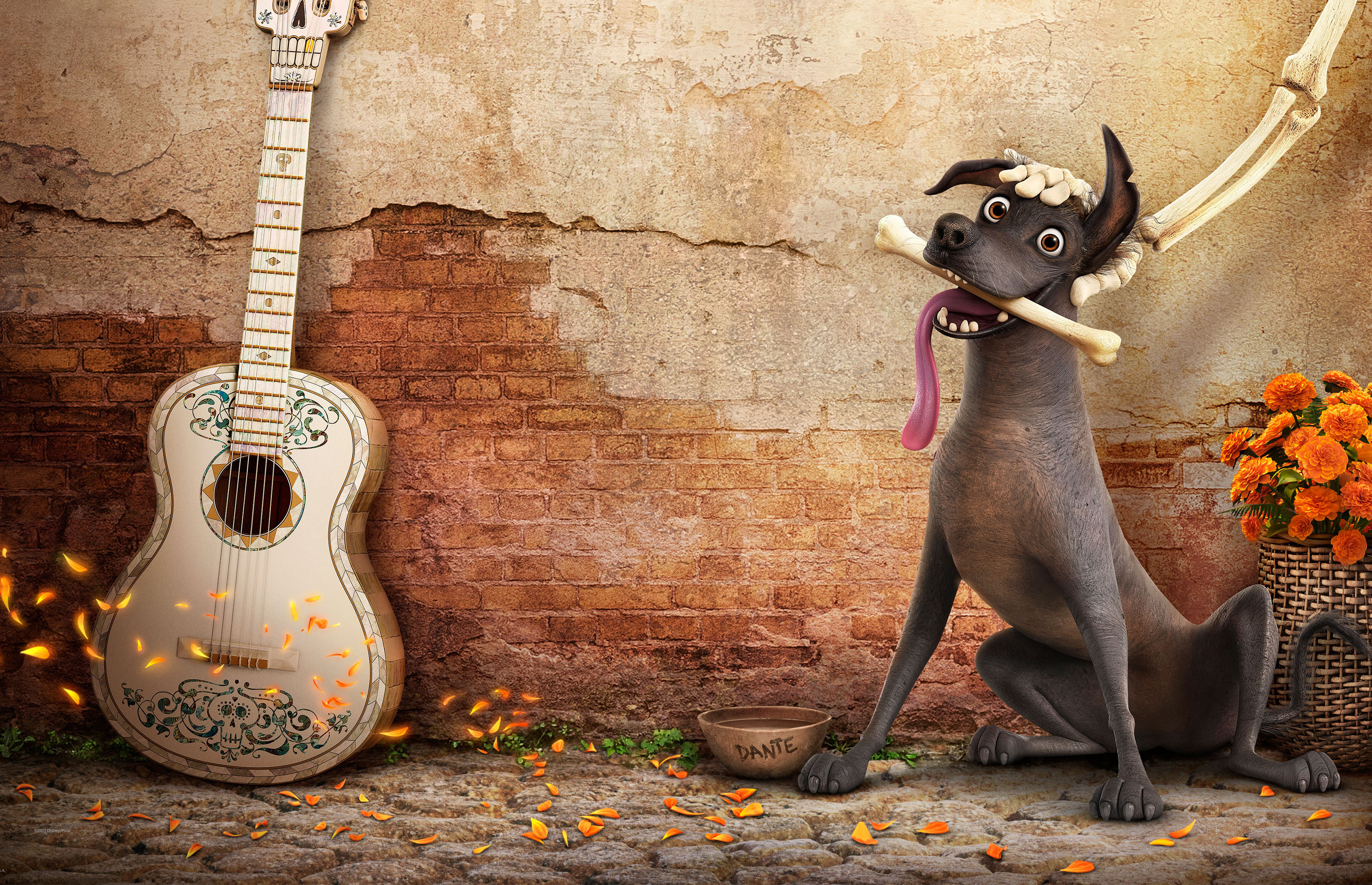 Coco HD Movies 4k Wallpapers Images Backgrounds Photos And Pictures