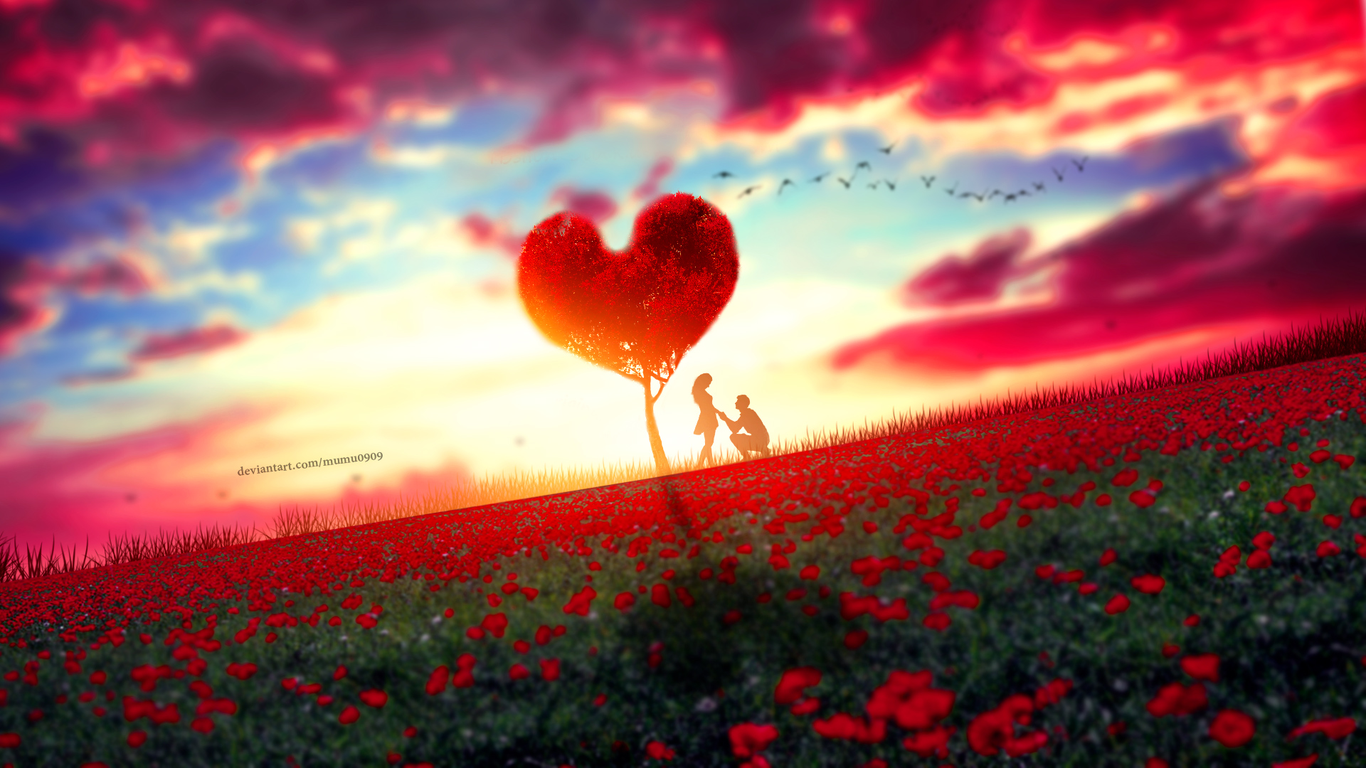 Couple Moment, HD Love, 4k Wallpapers, Images, Backgrounds ...