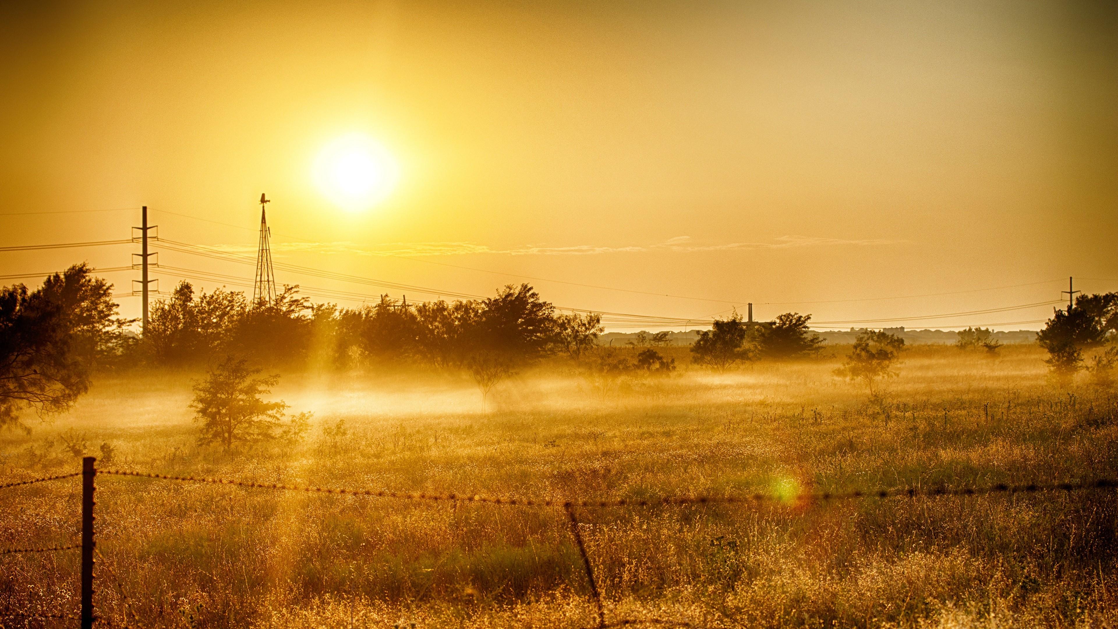 Dawn Grass In Summer Light, HD Nature, 4k Wallpapers ...