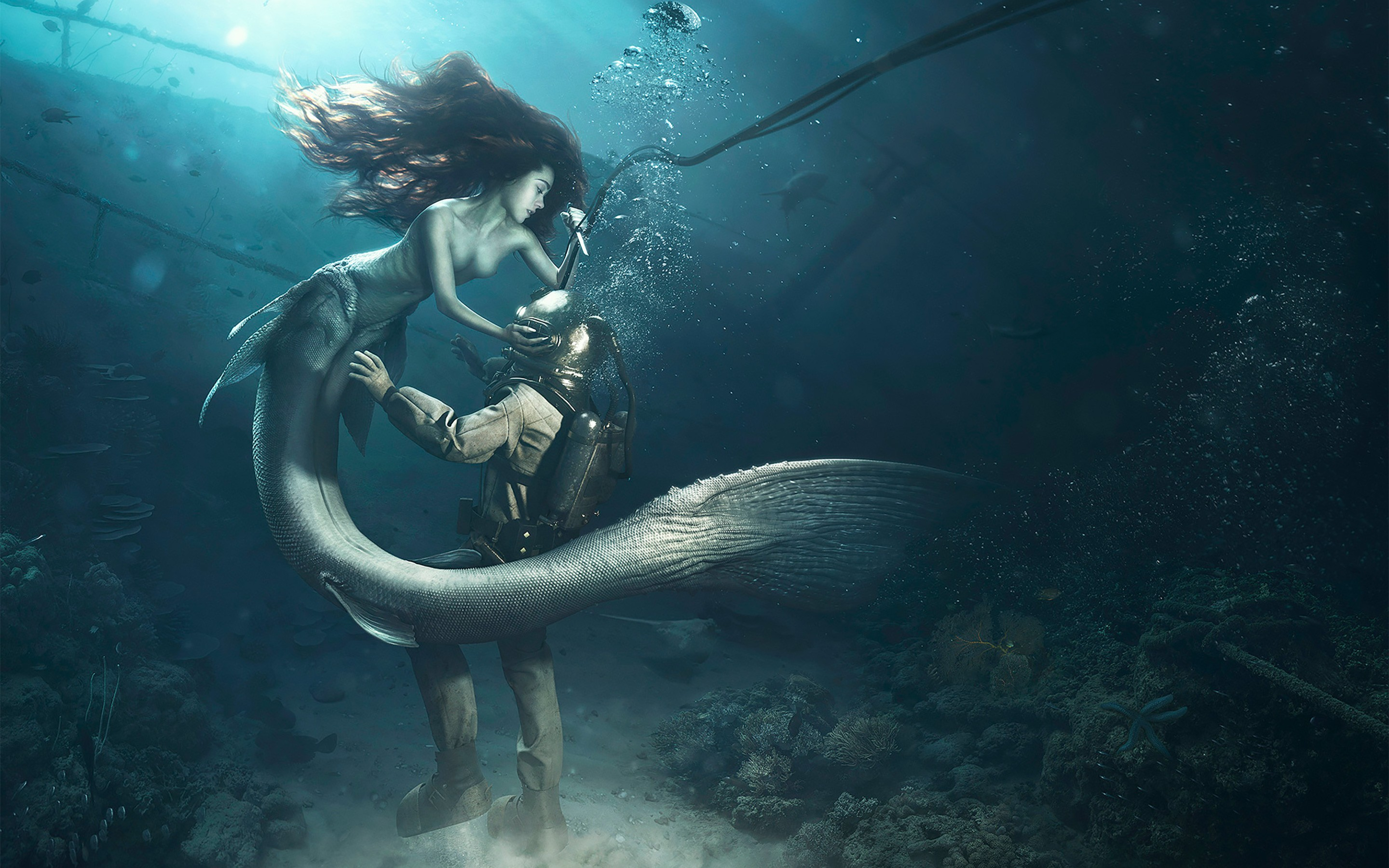2048x1152 diver and the mermaid 2048x1152 resolution hd 4k - Mermaid wallpaper hd ...