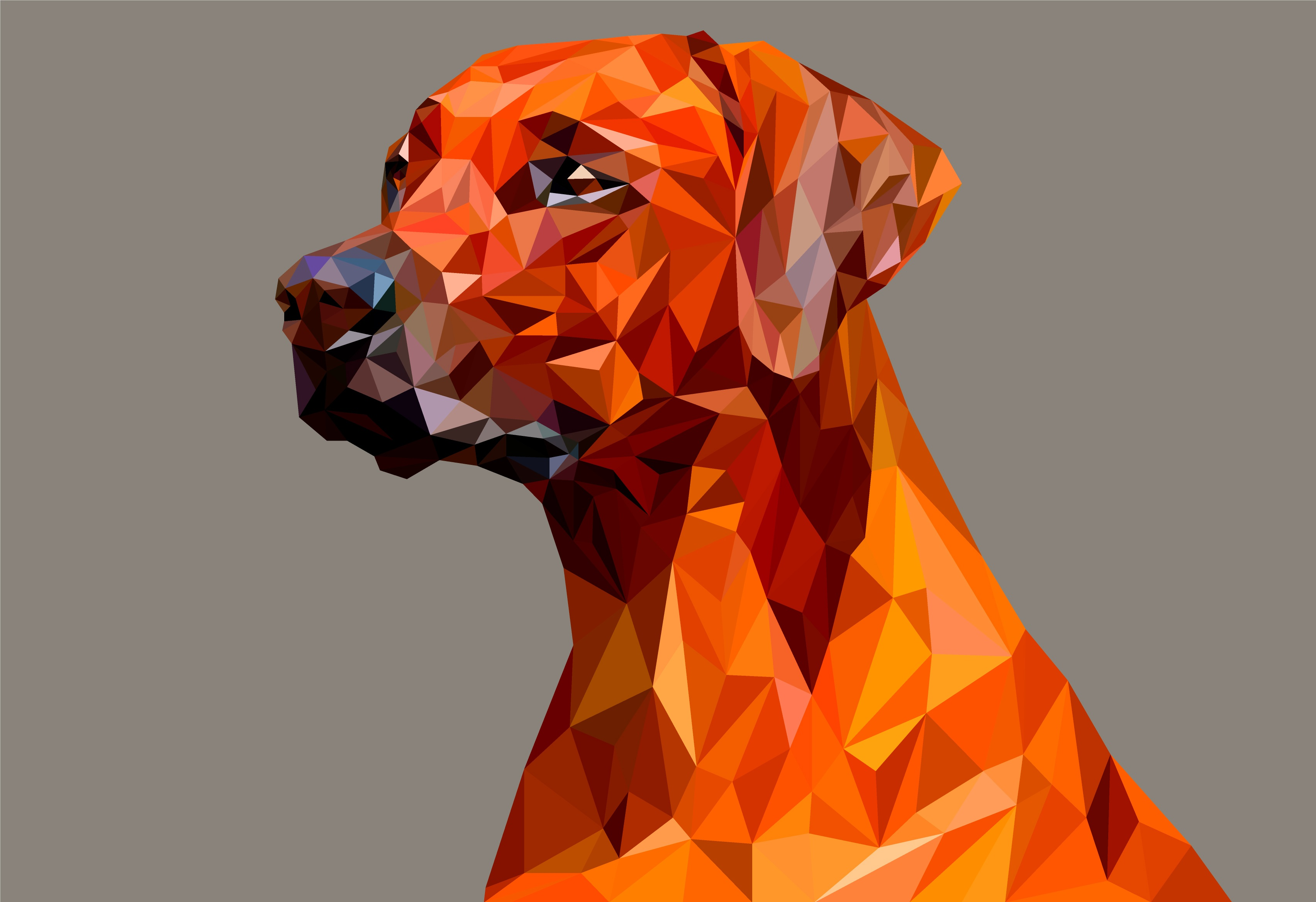 Dog Polygon Facets HD Abstract 4k Wallpapers Images Backgrounds