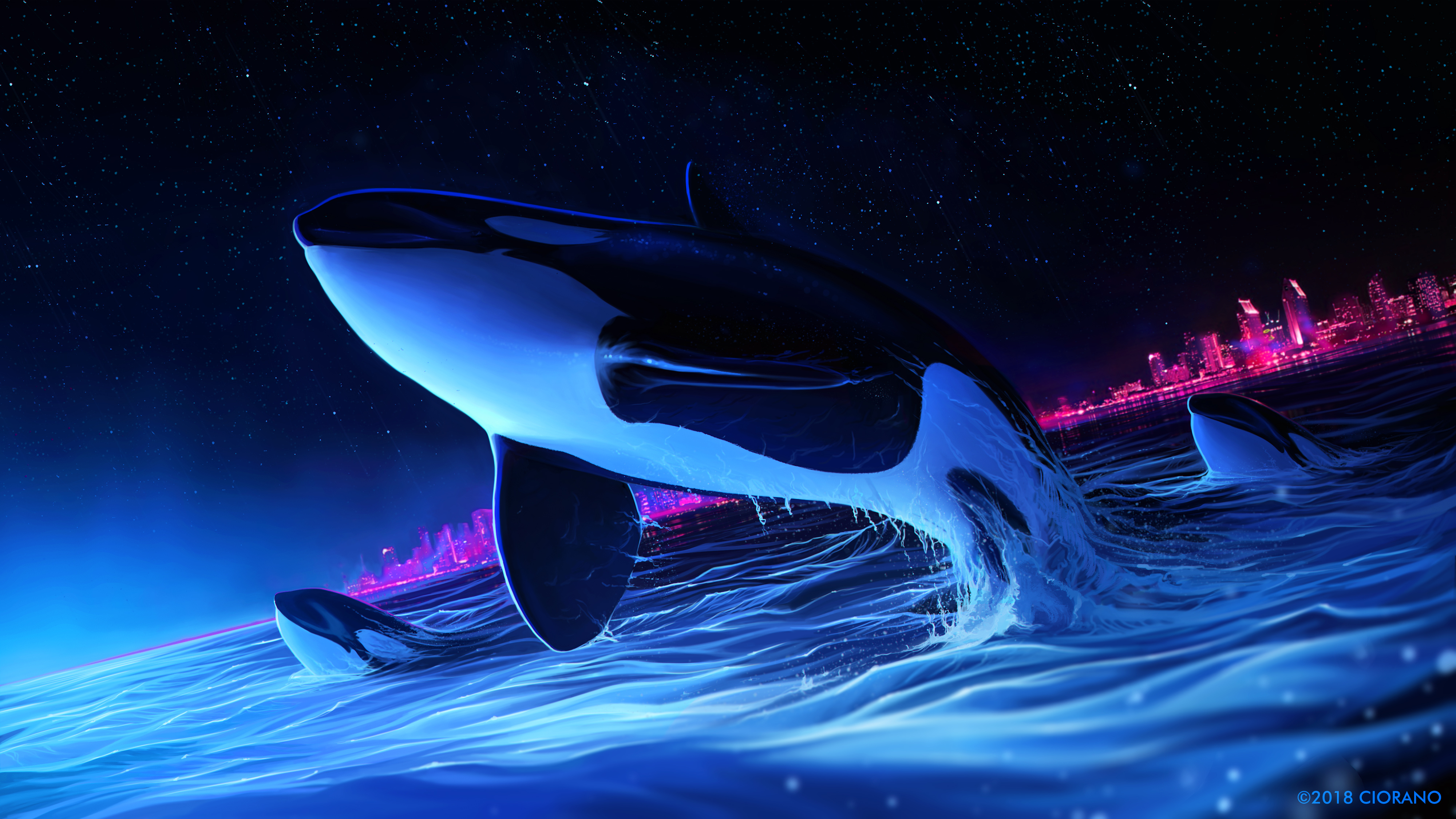 1242x2688 Dolphin Night Orca Whale Digital Art Iphone Xs Max