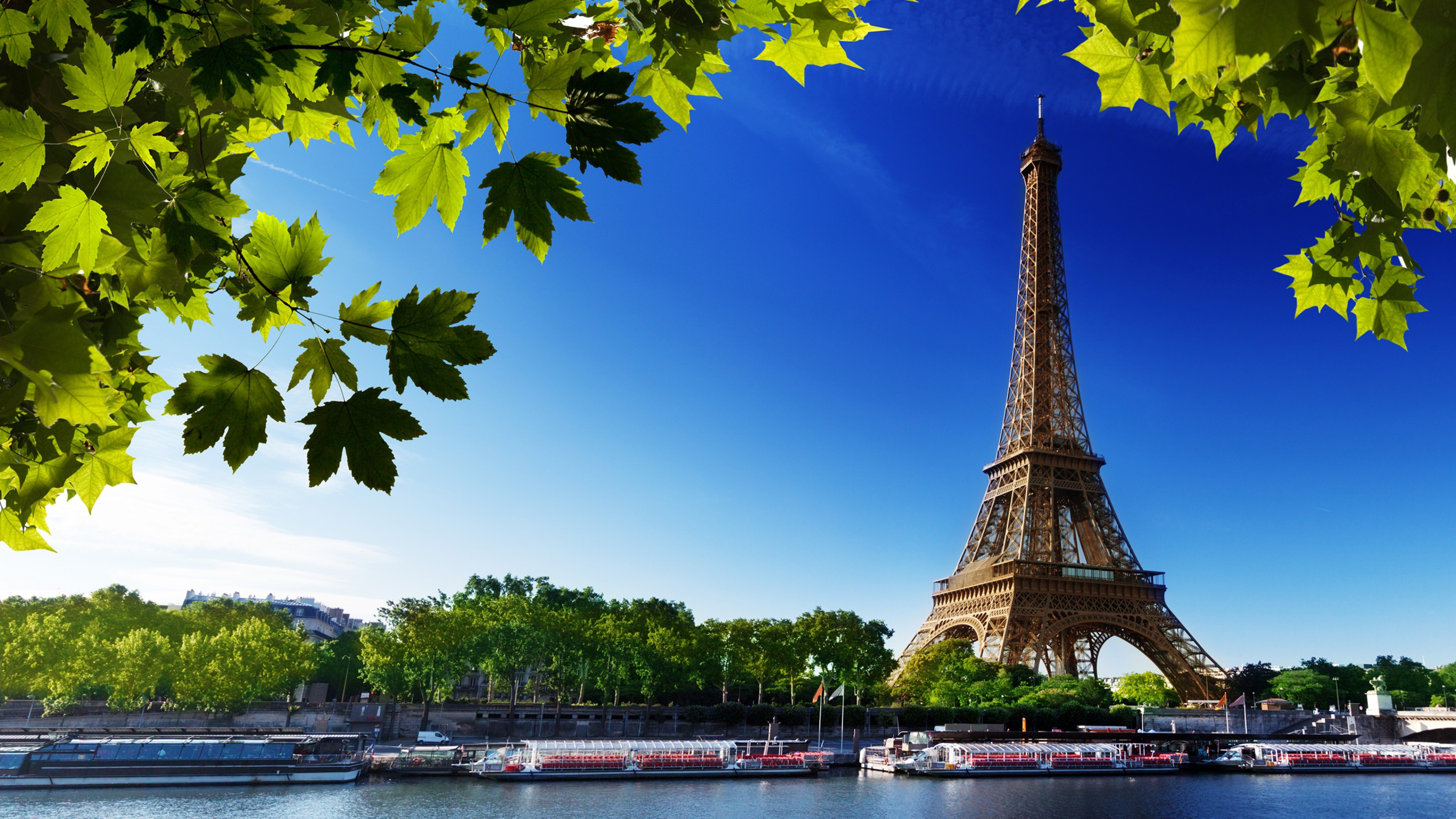 Eiffel Tower Paris 4k Hd World 4k Wallpapers Images Backgrounds